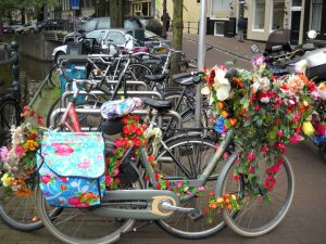 The several bikes that you will find EVERYWHERE.