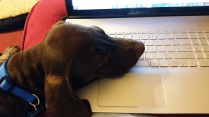 No, I'm not trying to write or anything.